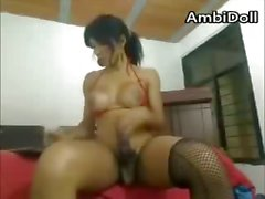 Latina Shemale Hooker In My Hotel