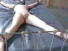 Torturarmi di ragazze sexy attivi