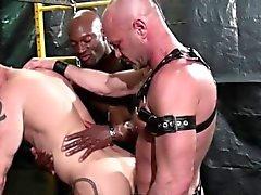 Stud barebacks schwarzen Hahn