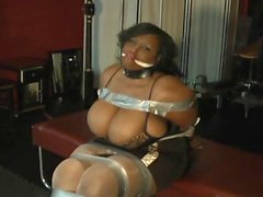 Black beauty in bondage