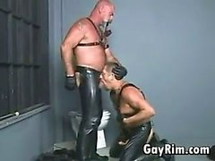 Homosexuell Radfahrer In Leder