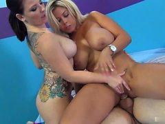 Bridgette B and Casey Cumz suck a lot of dick on their own,