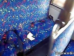 Karvaisia Brittiläinen Amatööriluokassa bangs julkisesti bussi