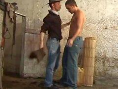 Barebacking vaqueros