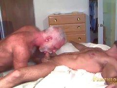 Dadi d'argento sexy di allenamento e Adam Russo scopano ogni altro nel letto