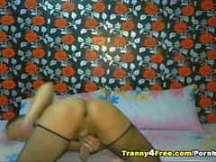 Asian Tranny Play Her Cock On Cam