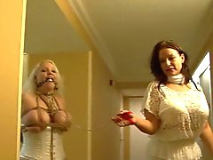 Full figured girl hogtied in white lingerie