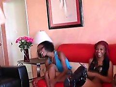 Dóminas de Ebony se ríen de polla blanca