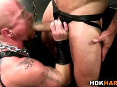 Gay studs ass fucked raw