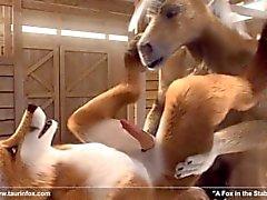 3D геем антрополога Лошадь и лисы ебать