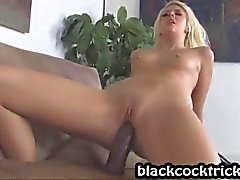 white puusy nailed by dark cock