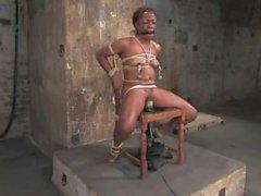 Monique amarrado a uma cadeira e vibrado
