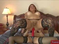 American shemale Tori Mayes anal by Katt