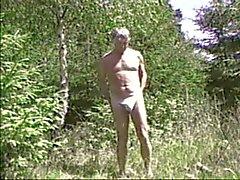 Wald sieben