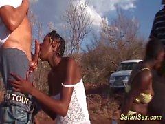 african safari sex orgy en el segmento de la naturaleza