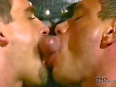The Link Orgies