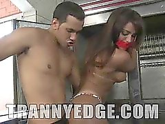 Submissive tranny Vanessa Meclayne is a bound captive