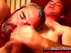 Duo alegre maduras sucking cock en el sofá