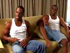 2548 Twins_stripper
