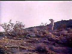 Roko Video- a Kate eo os indianos da 1979