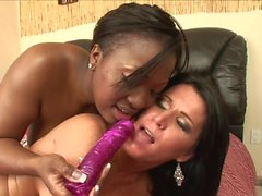 Curvy ebony and hot white slut have lick session on the sofa