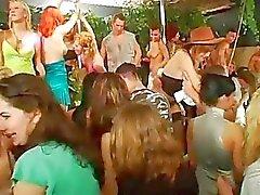Da dança sedutor com mulher e pedaços