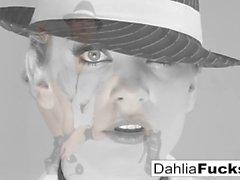 Dahlia Sky solo divertido compilação