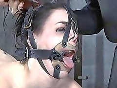 Caged up babes are forced to gratified each other