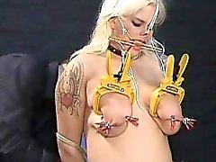 Chicas esclavo de DDSM aficionados