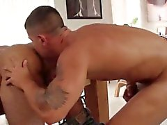Muscular stud hunk gets his cock sucked