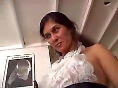 Martellare pelosa Domestiche pussy del francese domestico TROC