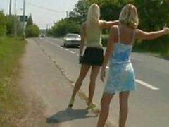 hitchhiker kuikens