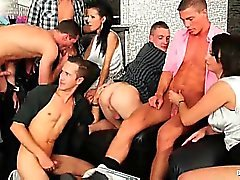 A new bisexual orgy is starting now and the champagne is