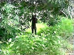 porra africano verdadeiro amador por parte da árvore 2