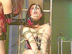 Mistress discipliner hennes slav