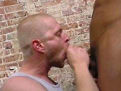 Gay prisoner sucking bbc