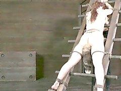 Legata tetta torture a Bella Rossi con fascette