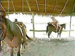 Njuta en häst tillbaka rida samtidigt ha passionerat sex!