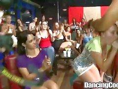 Dancingcock Group BJ orgie