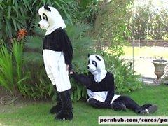 Nicole Aniston & Lucas Geada Panda Estilo