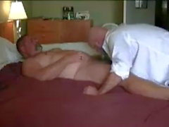 two bears having good time in hot bed