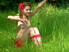 Diana - Wald Schmetterling