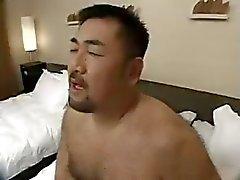 Asian Bären