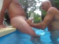 Garza argentina en la piscina