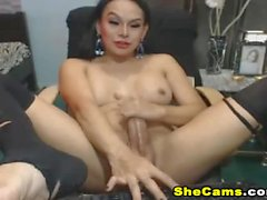 Solo Shemale Wanks Off After Showing her Ass