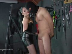 rude treatment ballbusting