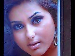 Hintli Tamil aktris namitha cum haraç