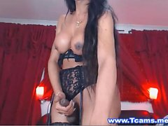 Sexy Brunette in Lace Lingerie Plays Big Tits and Cock