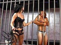 Leah Wilde is een moeilijke gevangenis cipier