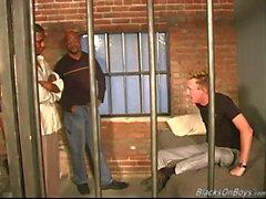 Valkoinen mies saa munaa vankila by mustat